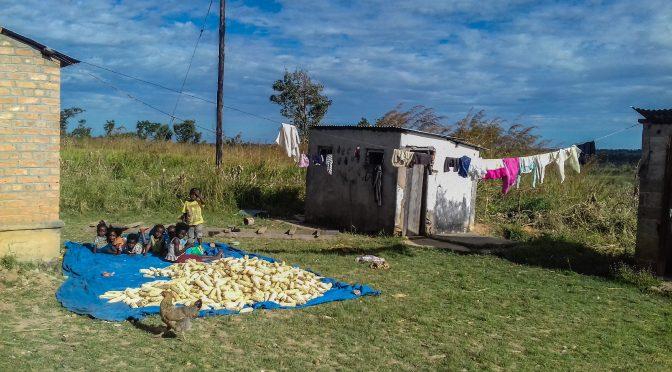 Beispielhaft versehen viele Priester in Sambia ihren Dienst